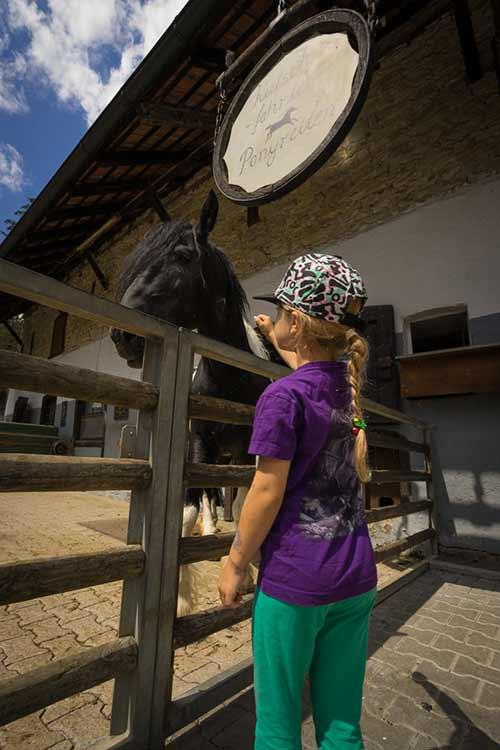 Pferde streicheln und Ponyreiten steht auch auf dem Programm
